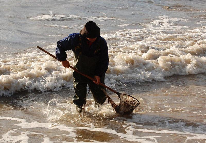 Poławianie bursztynu