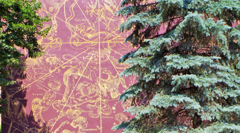 Mural z mapą nieba Jana Heweliusza. Wycieczka do Torunia, Fromborka, Lidzbarka Warmińskiego i Olsztyna – Hit The Road Travel