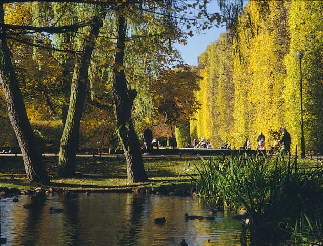 Park Oliwski - Aleja Lipowa. Zwiedzanie Gdańska zprzewodnikiem – Hit The Road Travel