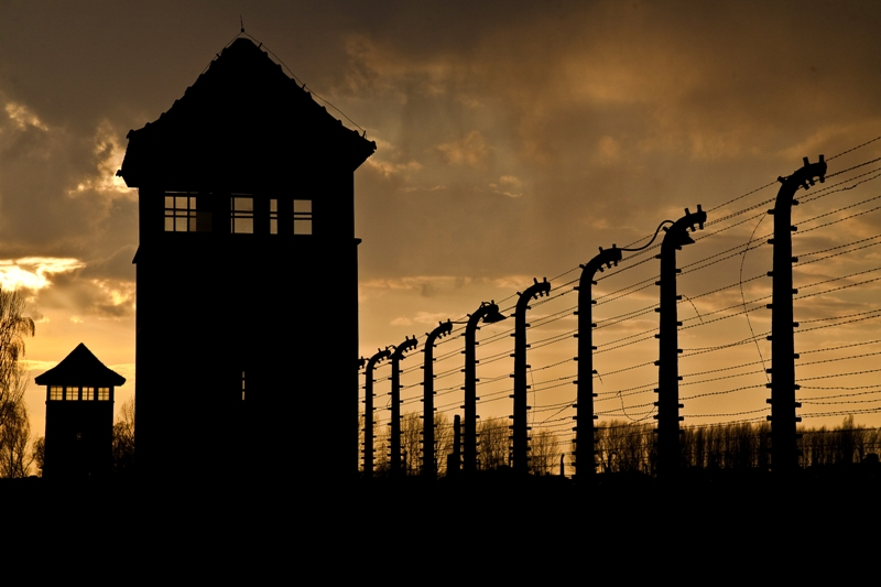 Muzeum Auschwitz-Birkenau wOświęcimiu. Wycieczka doKrakowa. Hit The Road Travel