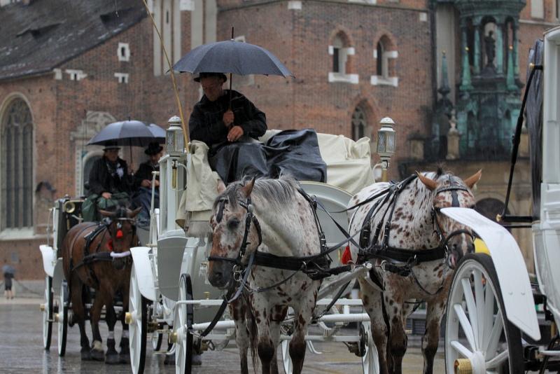 Krakowskie dorożki. Wycieczka do Krakowa – Hit The Road Travel